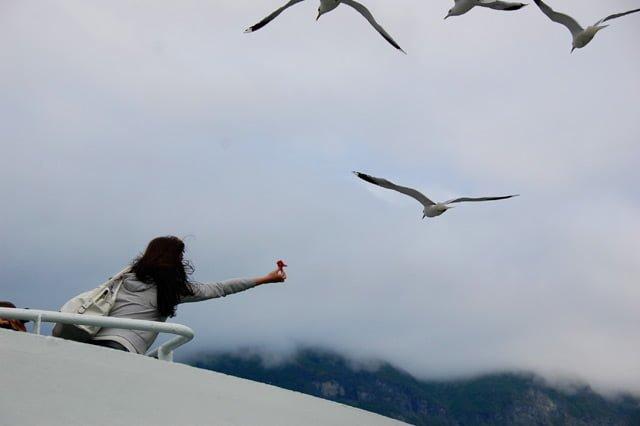 Norvège, à bord du ferry sur le Geirangerfjord