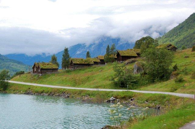 Norvège, toitures végétales