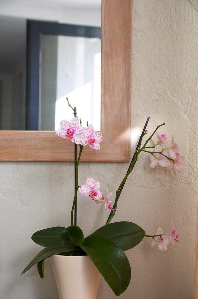 Entre parenthèses, institut de beauté à l'Ile d'Yeu