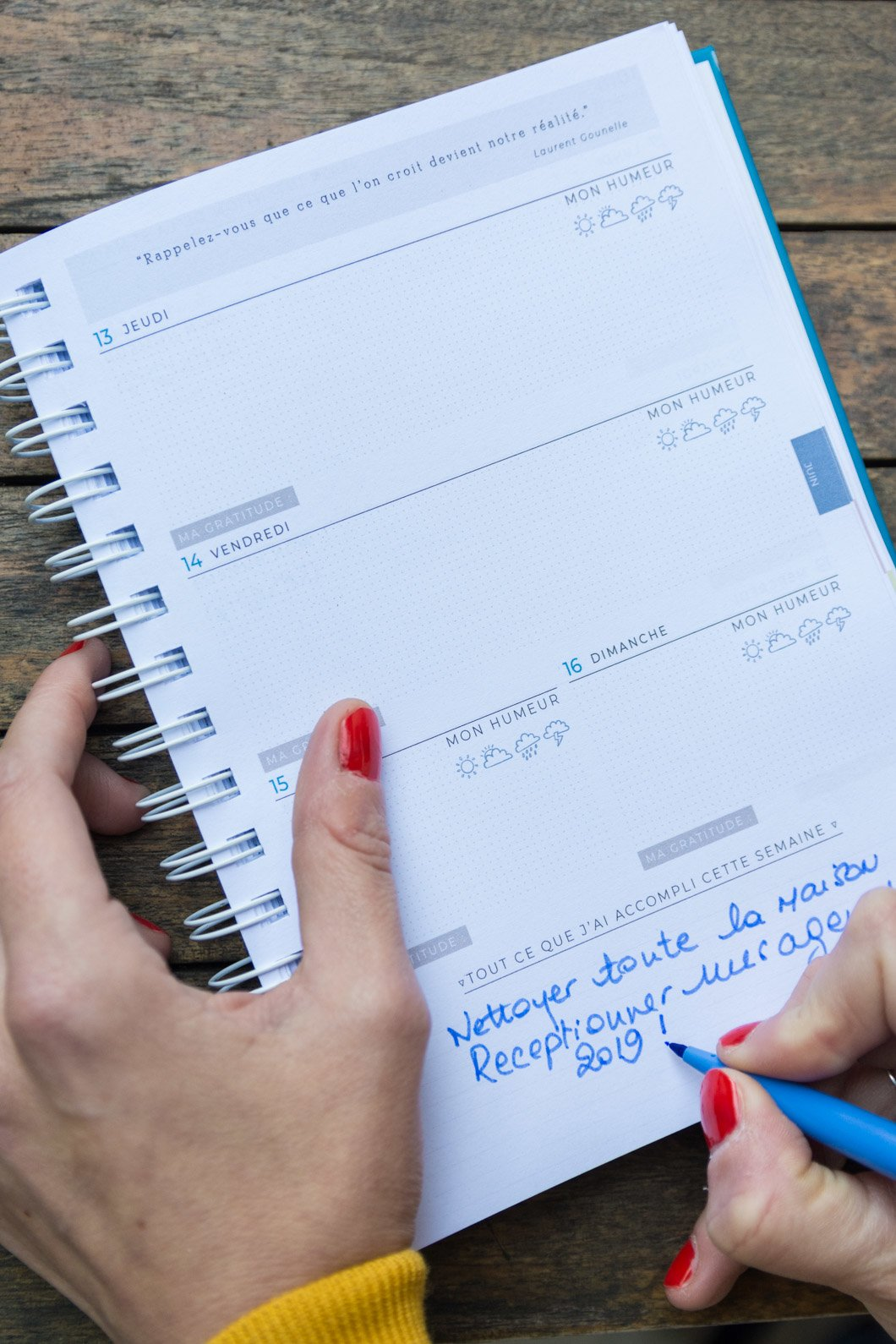 L'agenda qui me veut du bien 2019 (l'agenda Slow Life - développement personnel) - 22v'la Scarlett